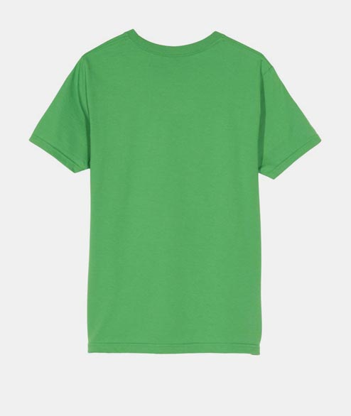 Stussy - W Stock Logo Tee - Kelly Green